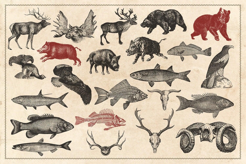 150 Vintage Hunting/Fishing Vectors
