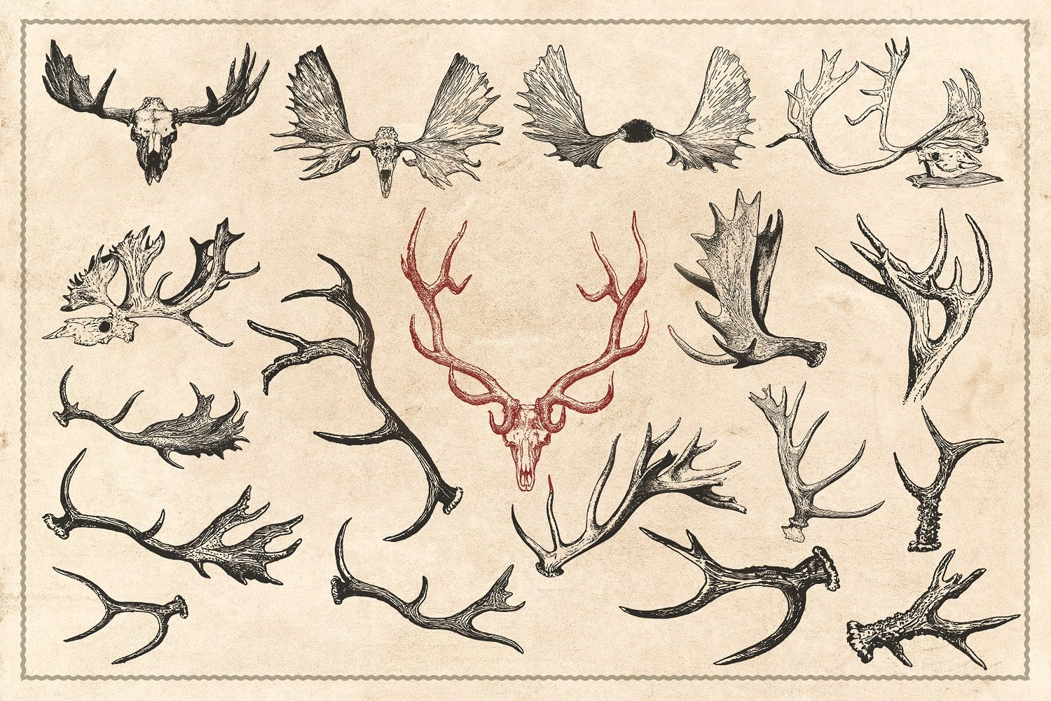 150 Vintage Hunting/Fishing Vectors