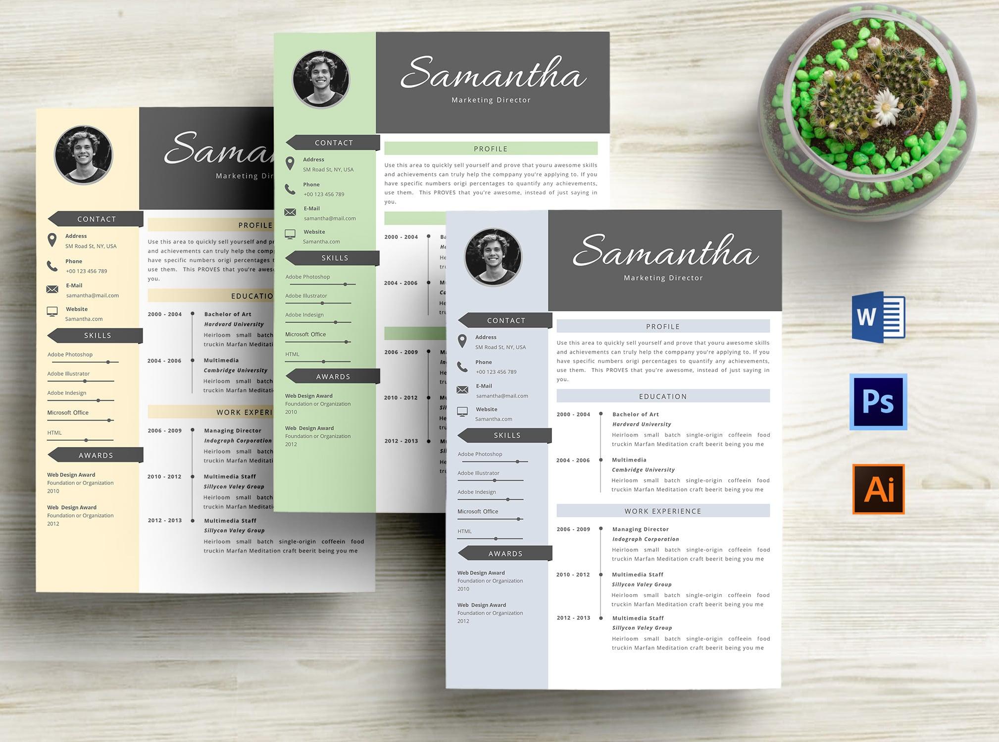 3 in 1 Professional Resume Template - tampilan awal 2