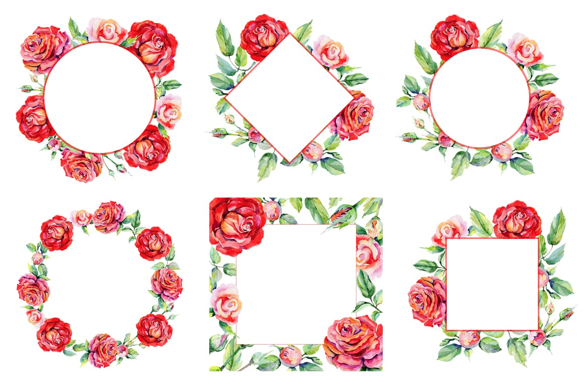 Roses PNG watercolor flower set - Illustrations