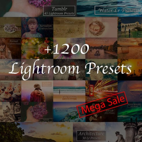 1200+ Professional Lightroom Presets - 491 1 490x490