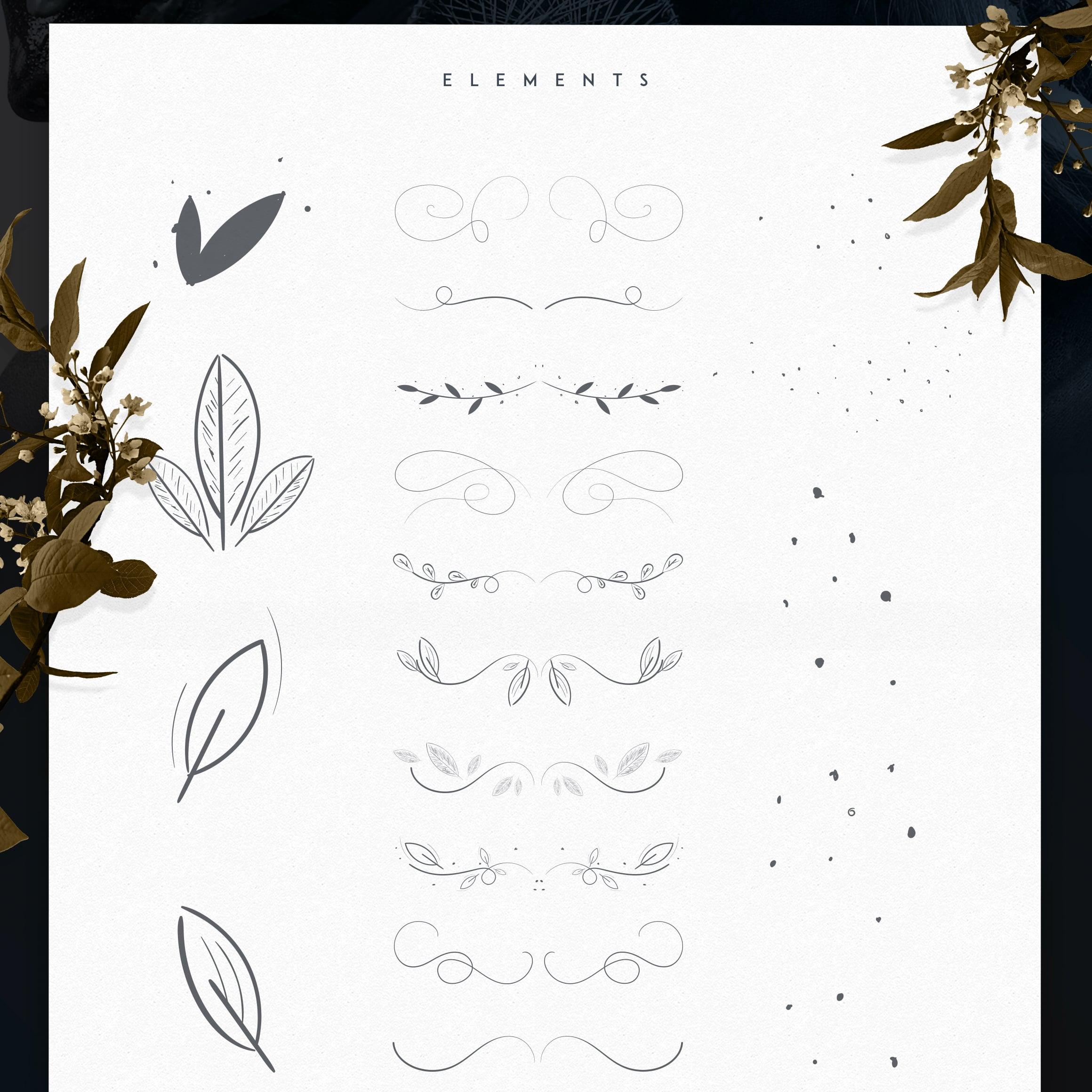 Emanuela Typeface cover image.