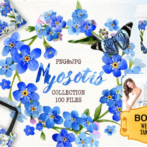 Myosotis Flowers PNG Watercolor Set - 1 cover 490x490