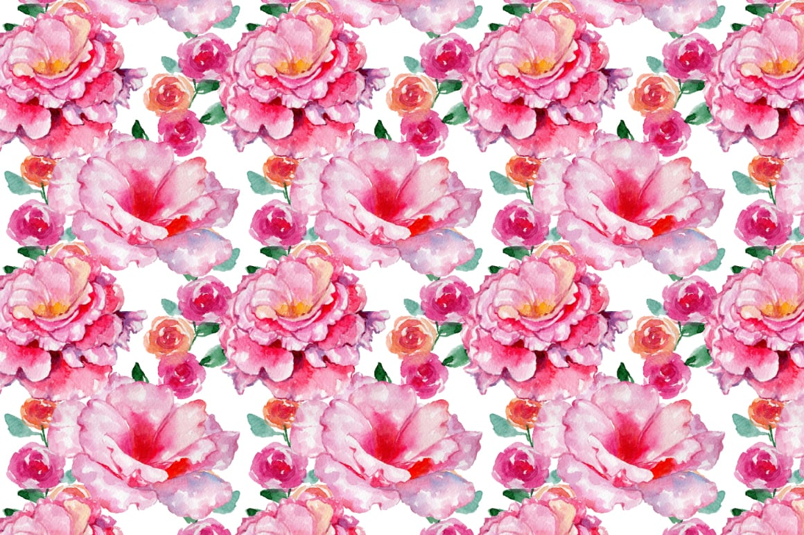 Roses flowers PNG watercolor set