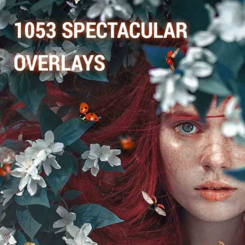 1053 Spectacular Overlays – Only $18!