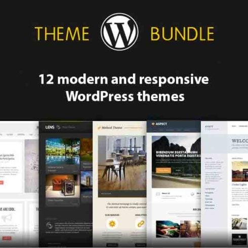 12 Modern and Responsive WordPress themes - 490 490x490