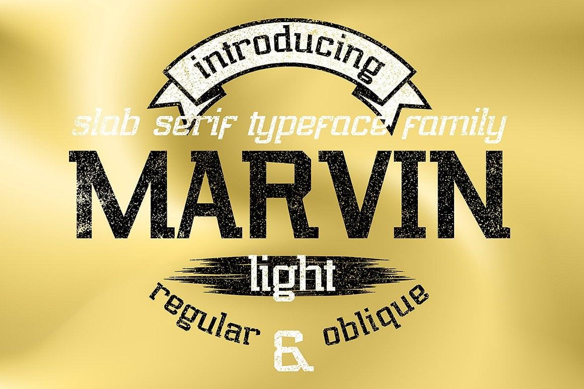 Font Bundle: 40 Typefaces from 22 Font Families - marvin light 01