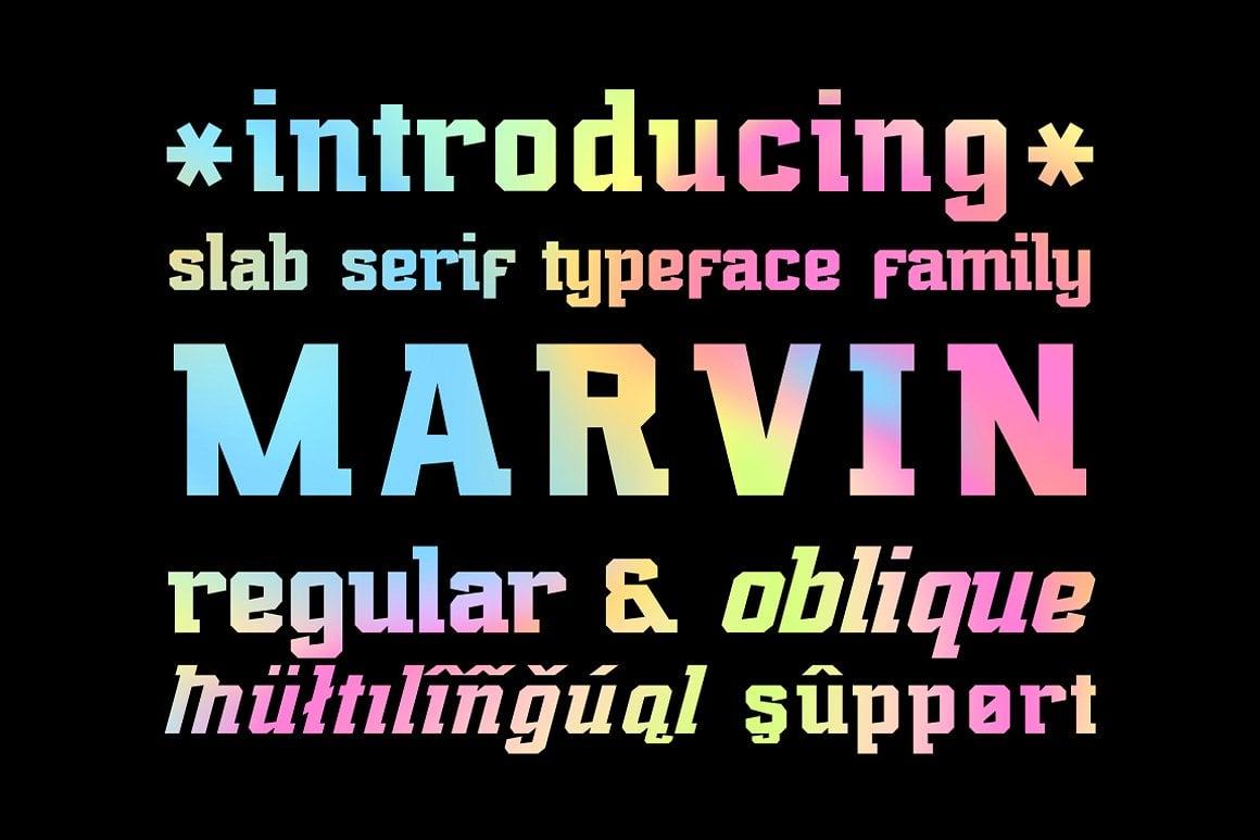 Font Bundle: 40 Typefaces from 22 Font Families - marvin regular 01