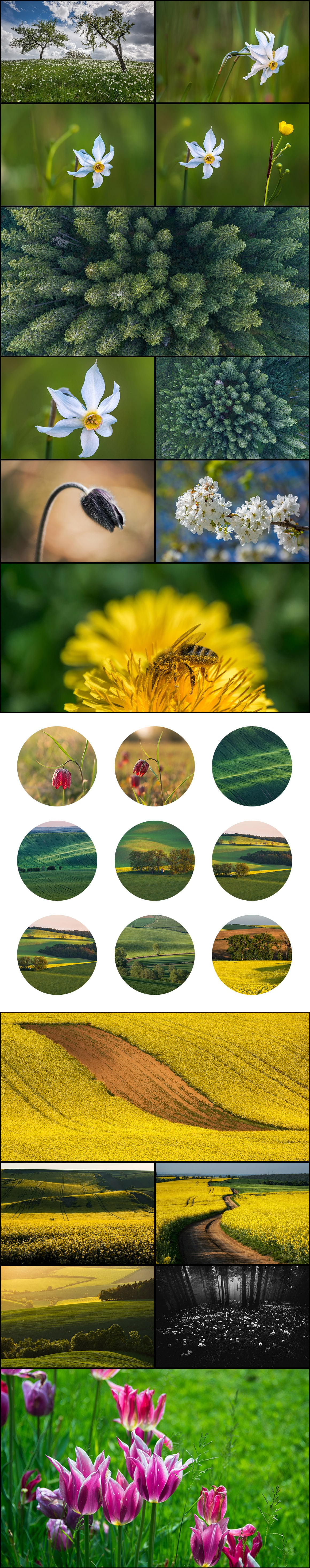 500+ Stock Images. Ultimate Photo Bundle  – $59 - PREVIEW nature3