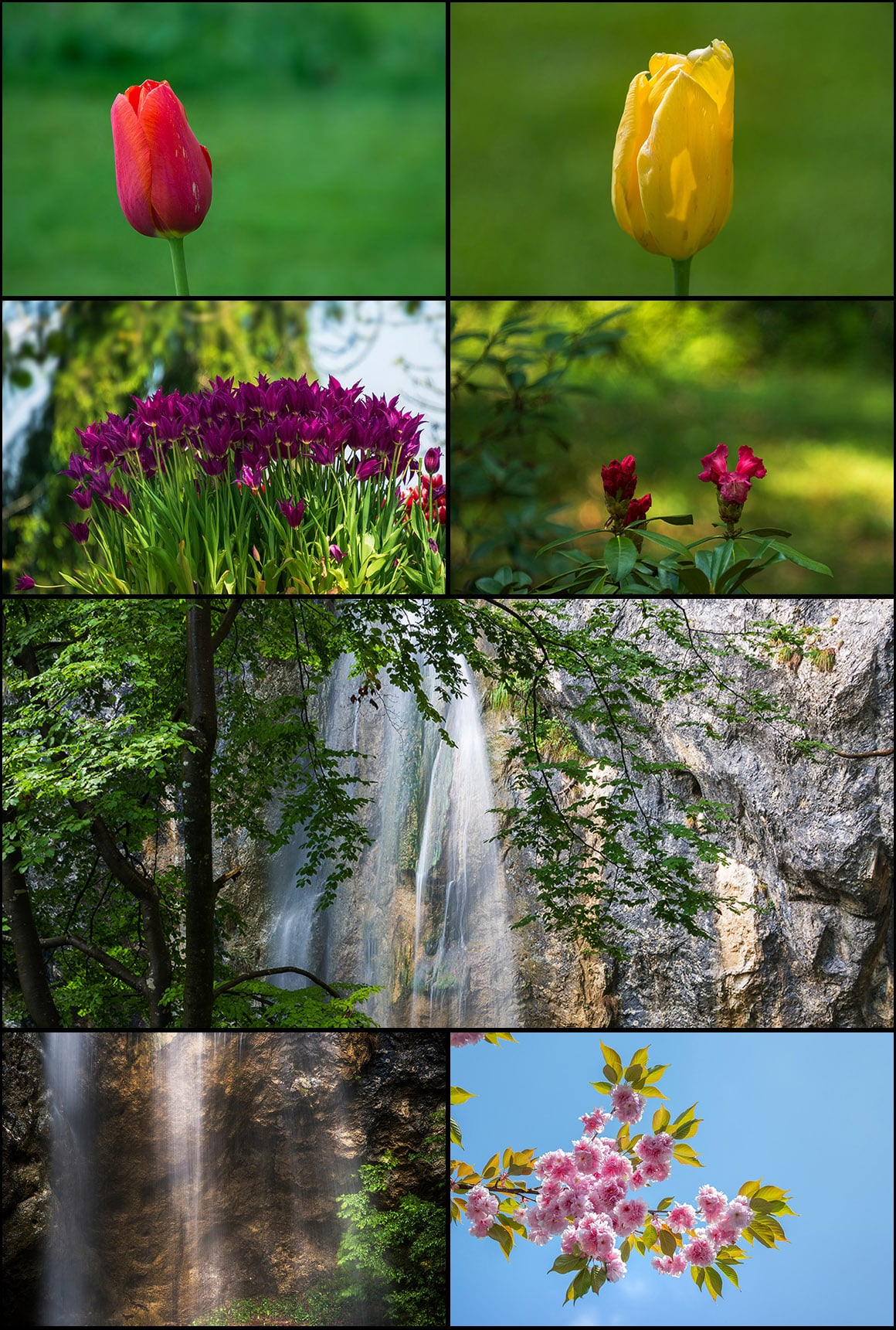 500+ Stock Images. Ultimate Photo Bundle  – $59 - PREVIEW nature4