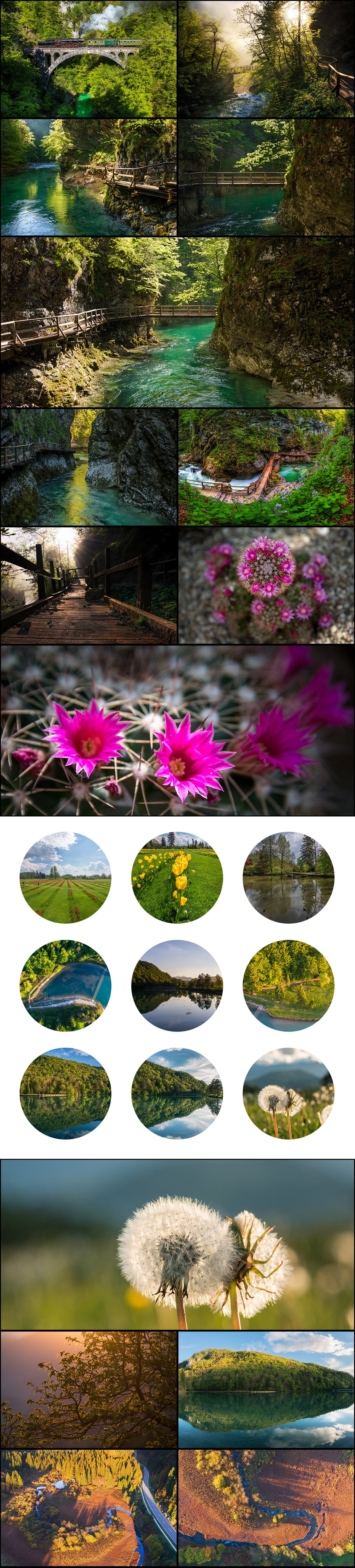500+ Stock Images. Ultimate Photo Bundle  – $59 - PREVIEW spring