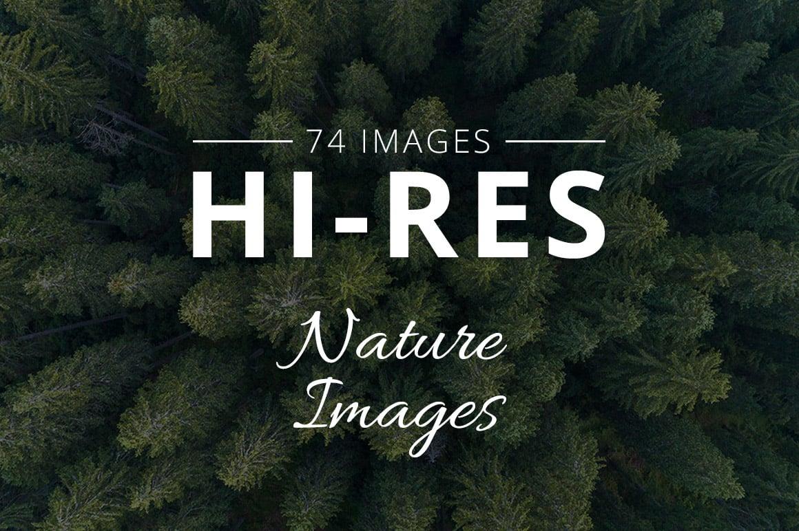 500+ Stock Images. Ultimate Photo Bundle  – $59 - THUMB nature