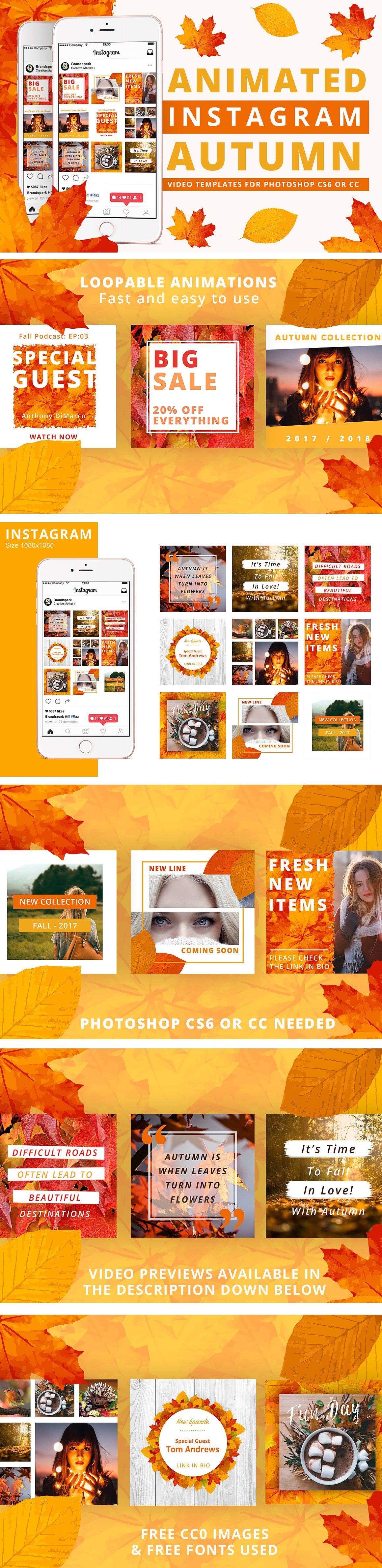 Animated Instagram Graphics Bundle - autumn fall social media instagram posts graphic design facebook pinterest leaves colors october business entrepreneur animated animate video gif loop loopable 0