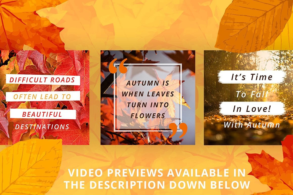 Animated Instagram Graphics Bundle - autumn fall social media instagram posts graphic design facebook pinterest leaves colors october business entrepreneur animated animate video gif loop loopable 5
