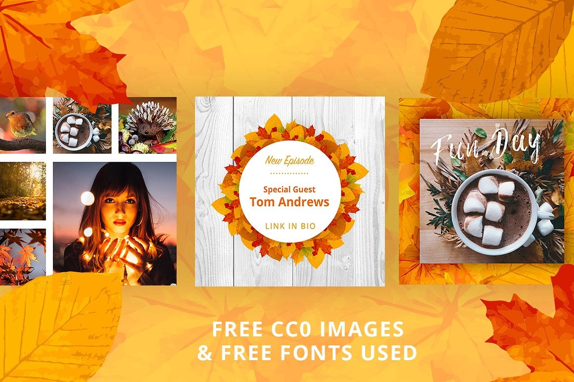 Animated Instagram Graphics Bundle - autumn fall social media instagram posts graphic design facebook pinterest leaves colors october business entrepreneur animated animate video gif loop loopable 6