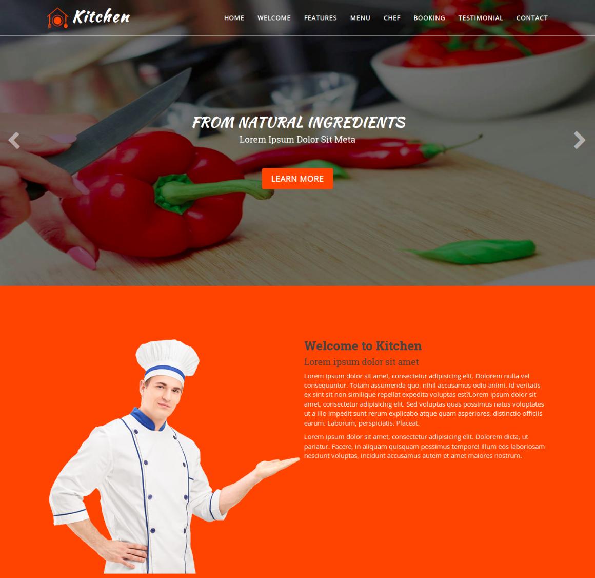 20 Premium HTML Template - food