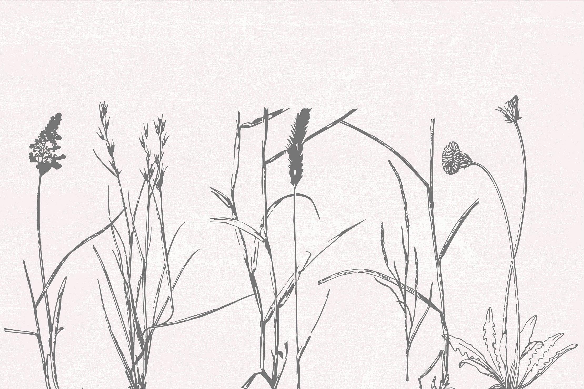 Field plants on a pastel background.