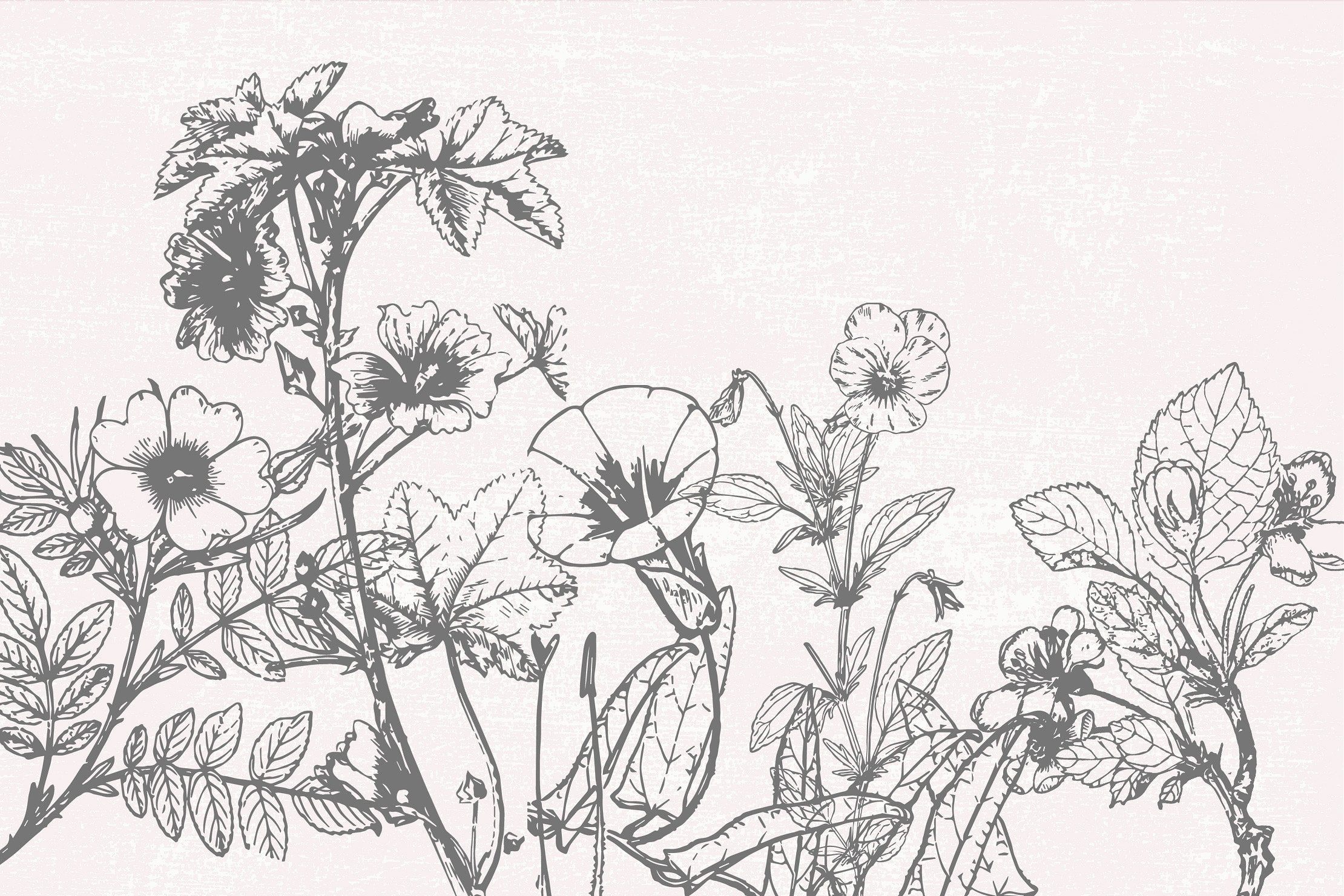 Abundant wildflowers. Beautiful in the simple.