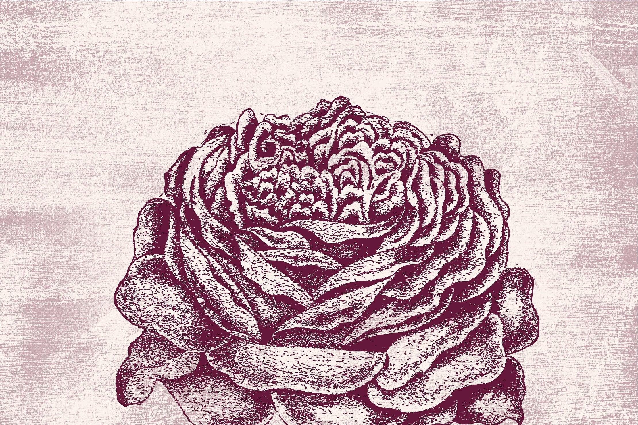 Floral Vintage Vector Illustrations