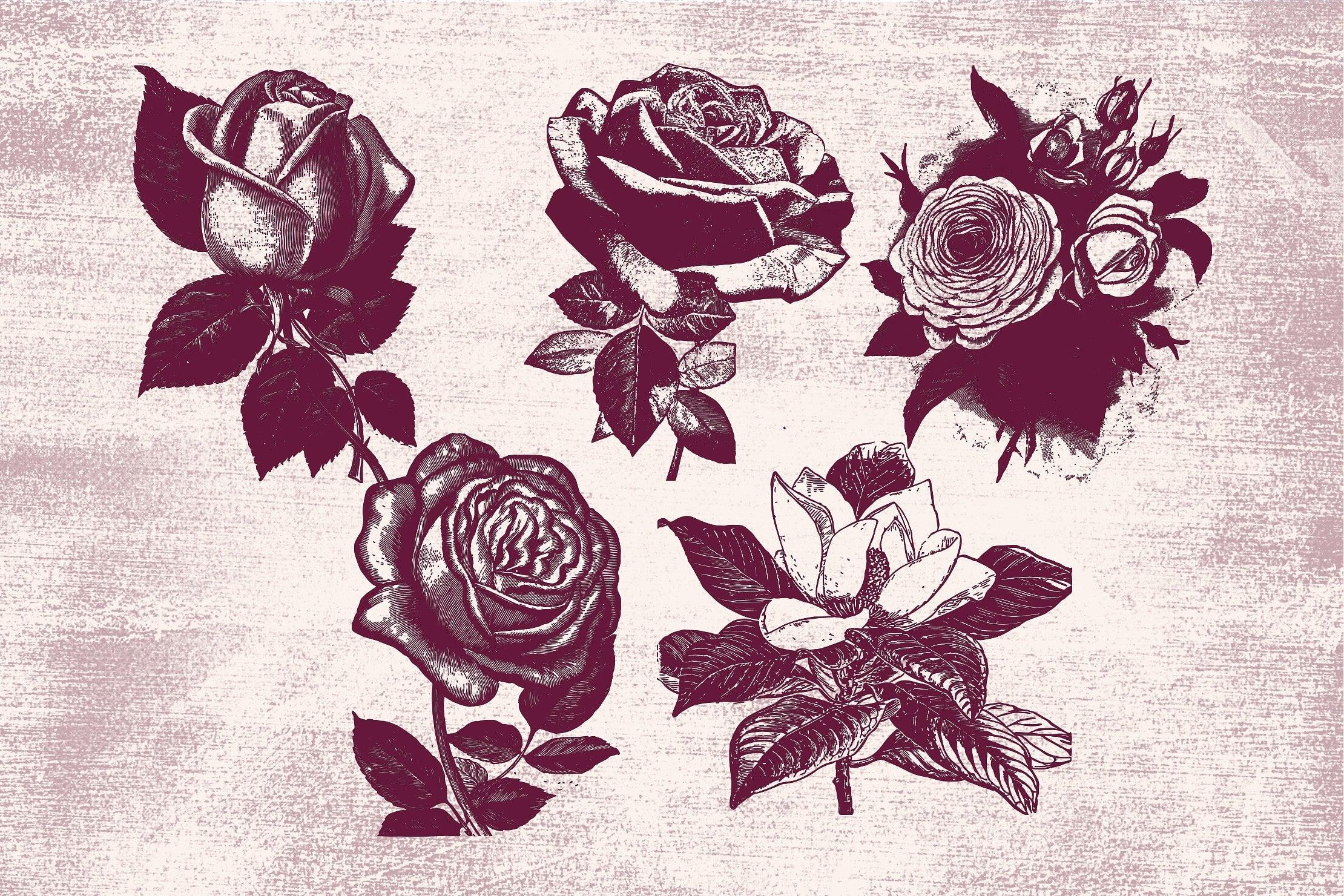 96 Floral Vintage Vector Illustrations [96 Items, EPS + PNG] - flowers 4