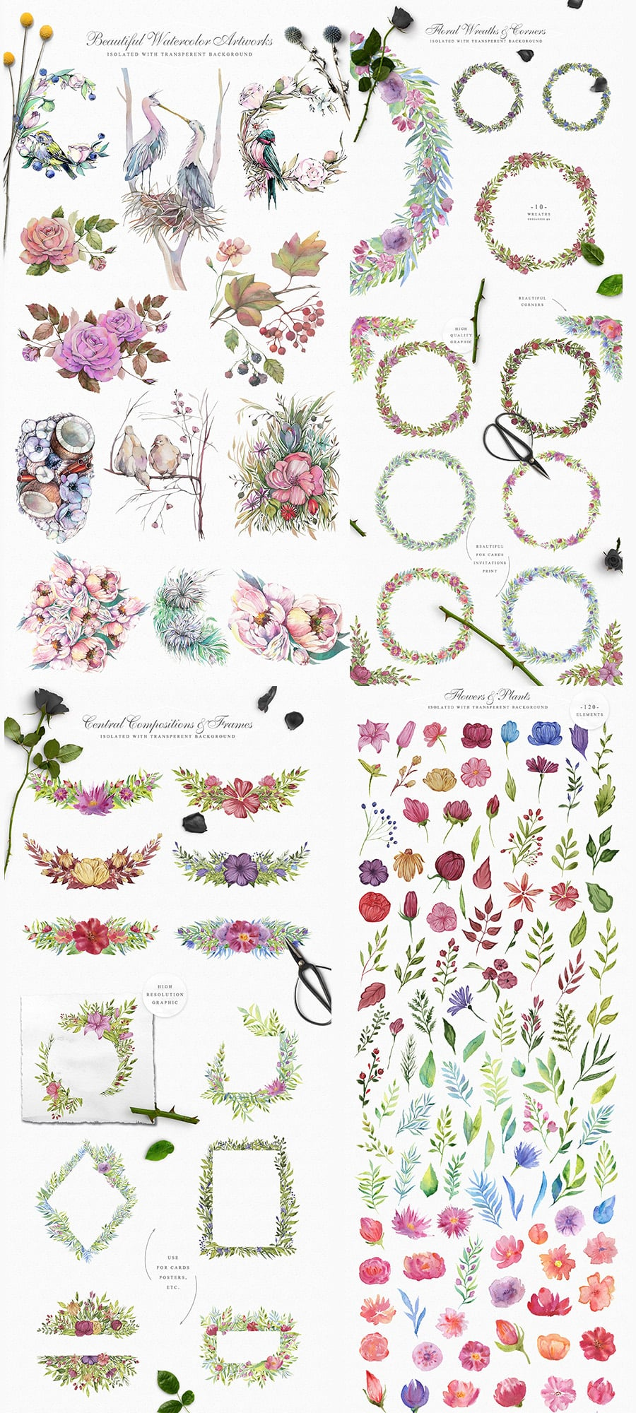 Spring Garden Watercolor Collection