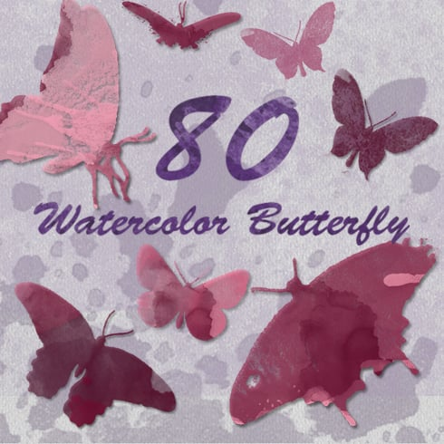 Author - 80Butterfly Main Image
