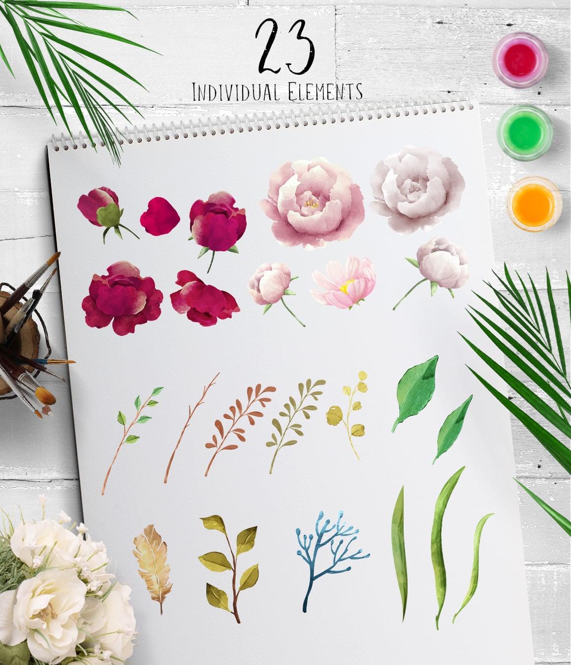 Peonioes Garden Watercolor Collecion