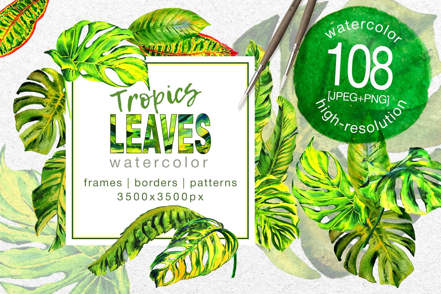 Tropics Leaves Monstera PNG Watercolor Set - cover 1 1