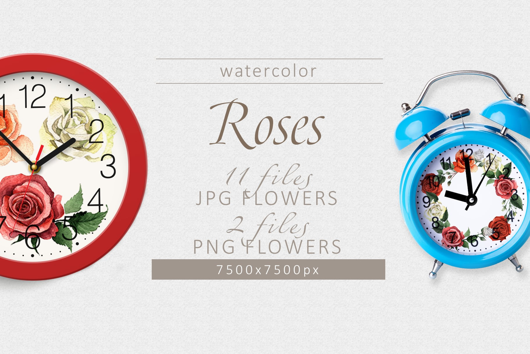 Colorful roses PNG watercolor set - cover 4