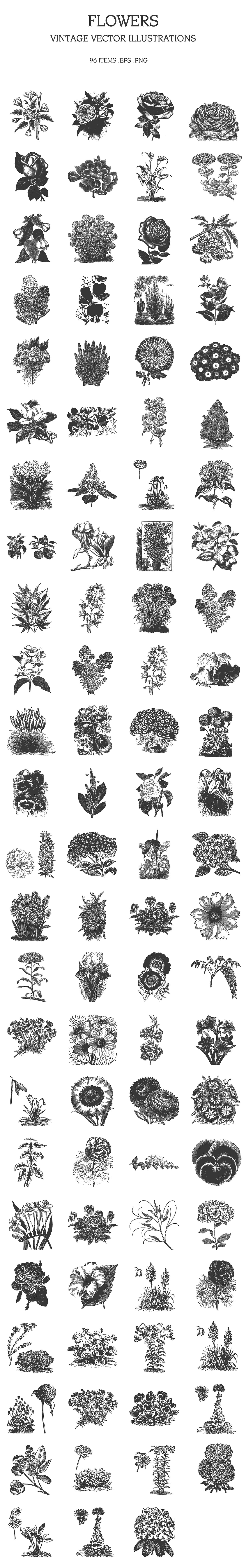 Large collection of flowers in vintage style.