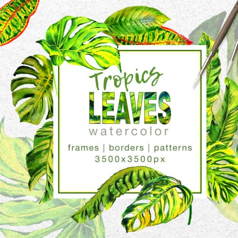 Tropics Leaves Monstera PNG Watercolor Set - promo 1 2 490x490