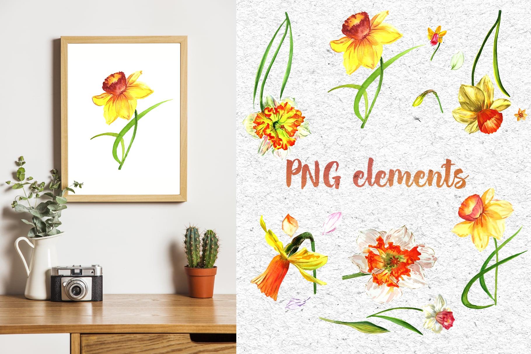 Narcissus Lemon PNG Watercolor Flower Set