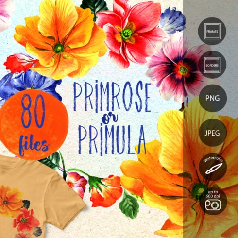 Primrose or Primula Flowers PNG Watercolor Set - promo 1 1 490x490