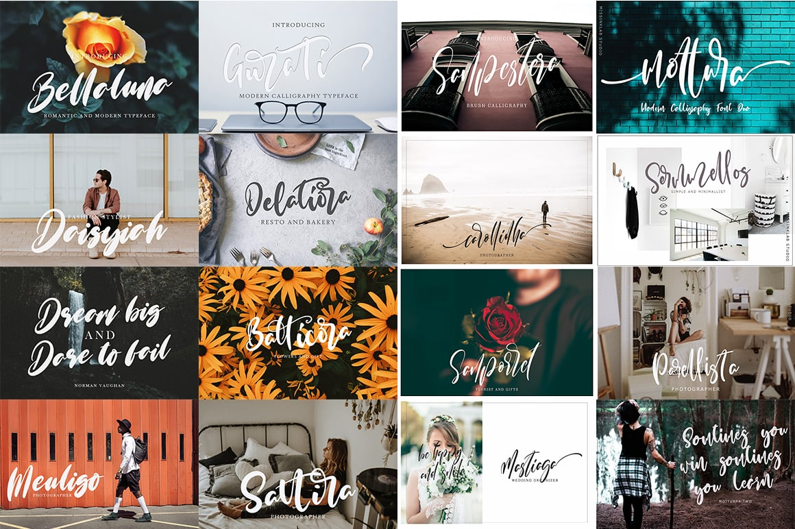 typography bundle