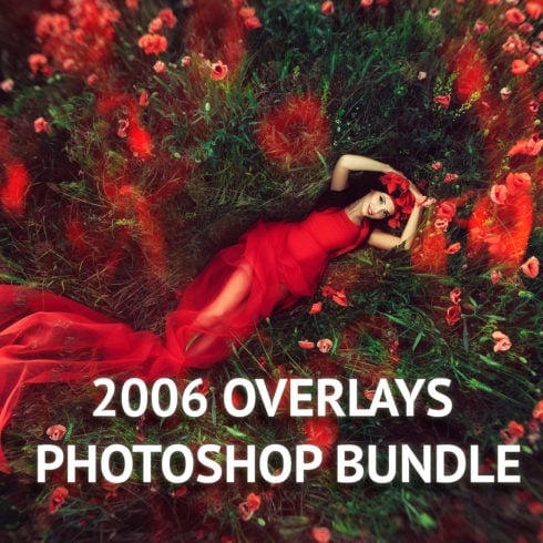 2006 Overlays Photoshop Bundle - FlyingHearts Preview 1 490x490