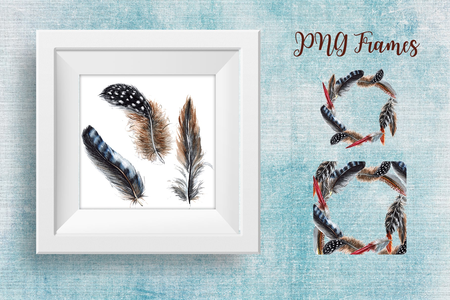 Delightful Feathers PNG Watercolor Set