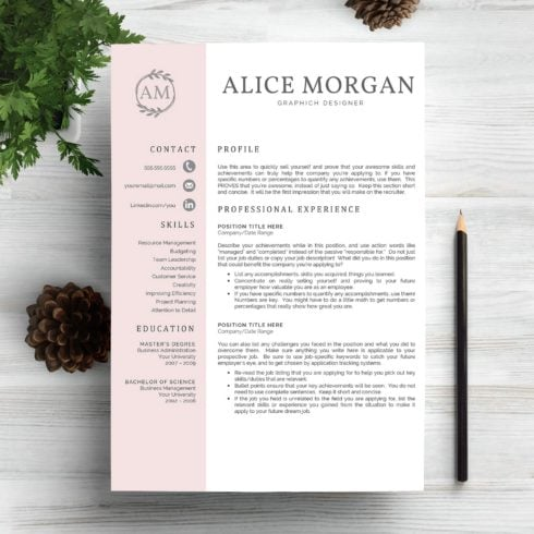 Professional Resume Template – only $9 - page 1 490x490