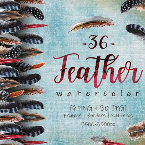 Delightful Feathers PNG Watercolor Set - promo 1 1 490x490