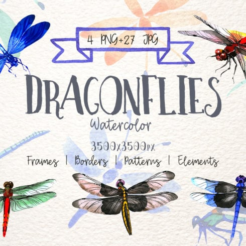 Insect Dragonfly PNG Watercolor Set - $6 - promo 1 490x490