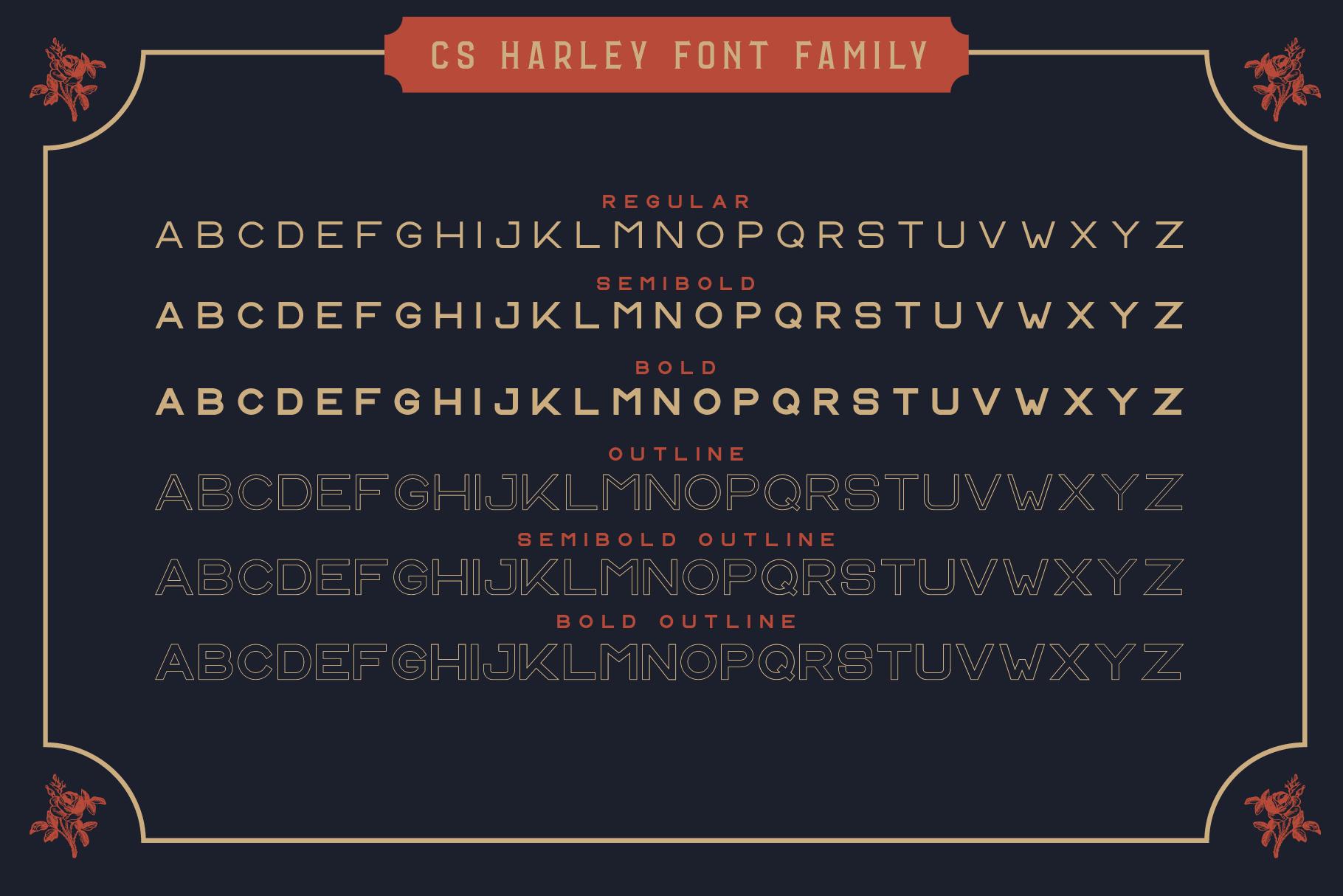 Vintage Font Bundle: 26 fonts + 100 extras - just $19 - 009 min 1