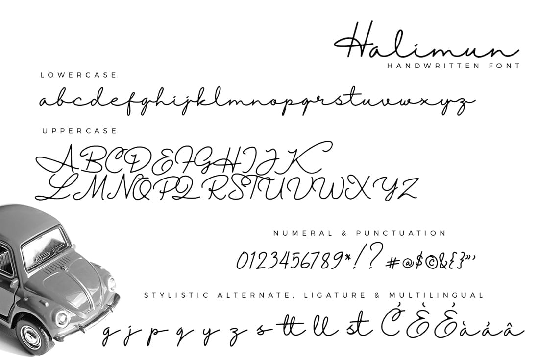 Hand Lettered Fonts - 16 Stunning Fonts - OTF, TTF, WOFF. Just $29! - 04 Halimun Preview 9
