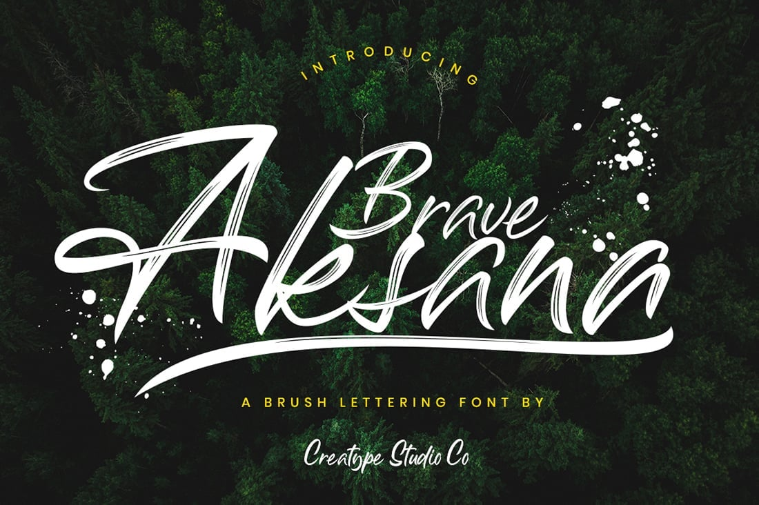 Hand Lettered Fonts - 16 Stunning Fonts - OTF, TTF, WOFF. Just $29! - 09 Aksana Preview 1