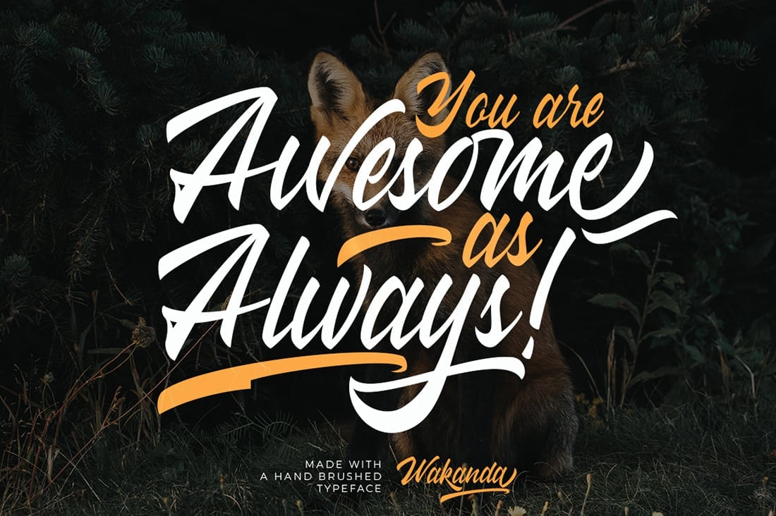Hand Lettered Fonts - 16 Stunning Fonts - OTF, TTF, WOFF. Just $29! - 13 Wakanda Preview 7