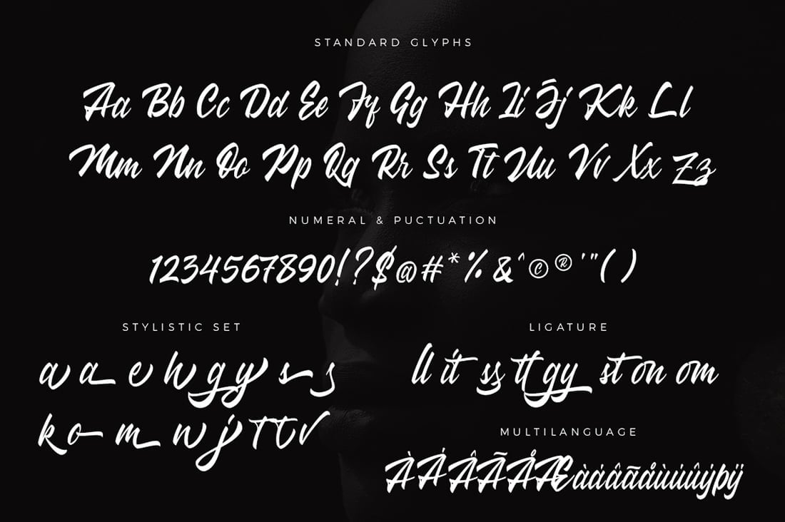 Hand Lettered Fonts - 16 Stunning Fonts - OTF, TTF, WOFF. Just $29! - 13 Wakanda Preview 8