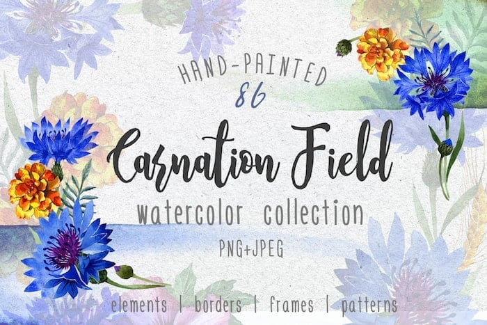 The Best Watercolor Bundle: 50 products, 2600 files - $19 ONLY - MYSTOCKS 3021 min