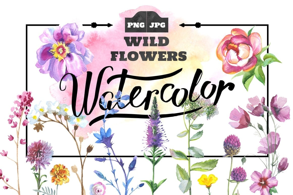 The Best Watercolor Bundle: 50 products, 2600 files