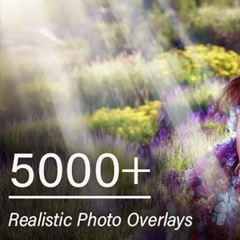 Author - 600 6 490x490