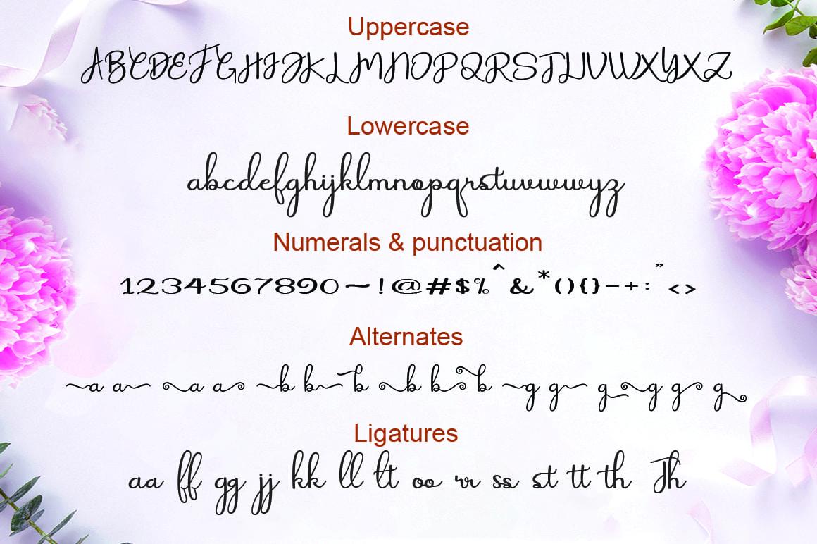 3 in 1 Fonts Mini Bundle - $10 ONLY - 61fc03890388c89202d63e62c654dffd resize