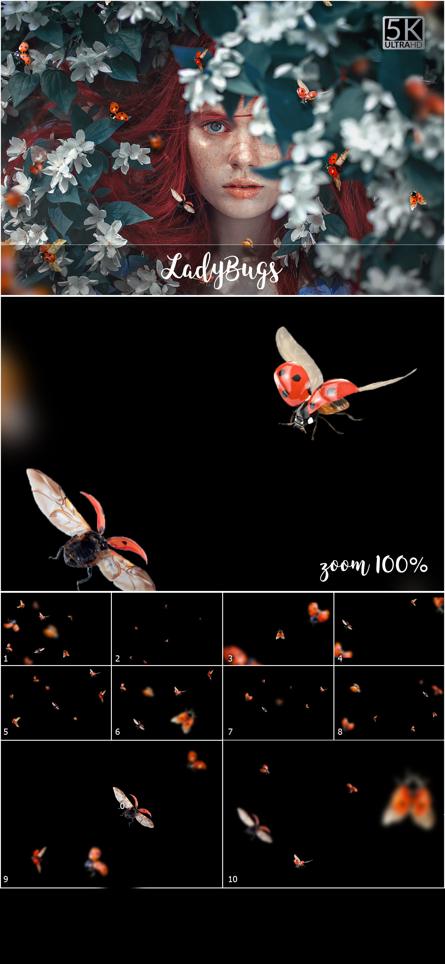Over 11 400 Aesthetic Overlays Bundle SPECIAL OFF 98% - 70 Ladybugs min