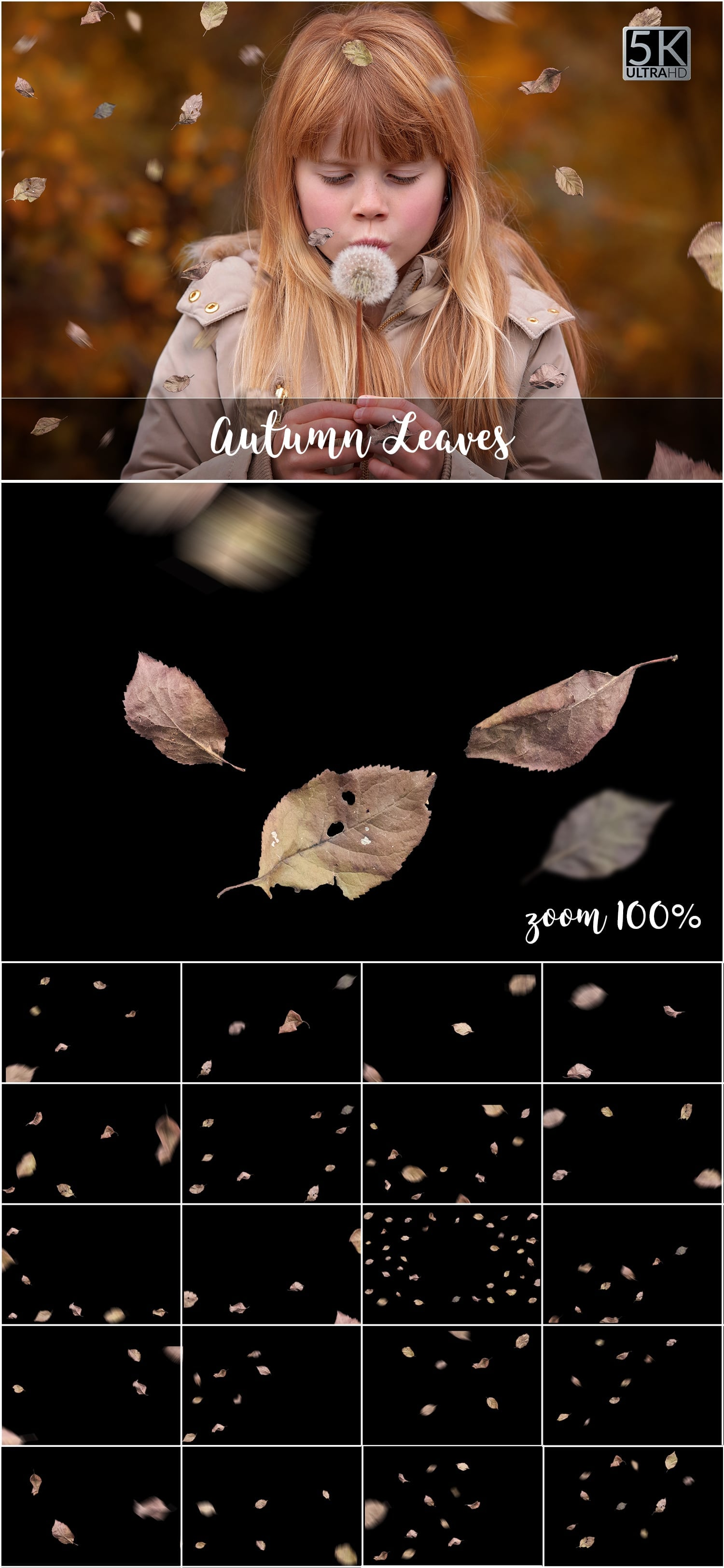 Over 11 400 Aesthetic Overlays Bundle SPECIAL OFF 98% - 71 Autumn Leaves min